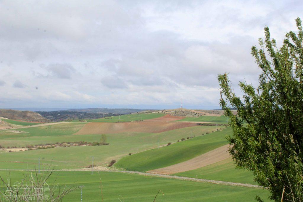 Prados verdes y algo ondulados. Cielo azul con nubes y un árbol frondoso a la derecha.